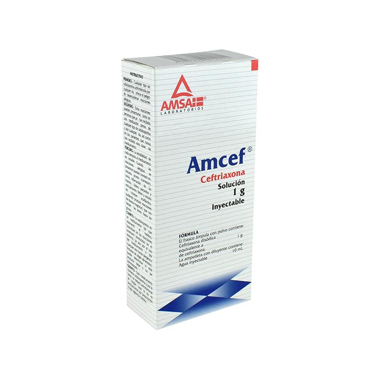 AMCEF INY 1G IV 10ML